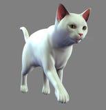 White friendly cat Stock Image