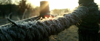 White frost on a rope Stock Photos