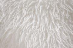 White fur. Artificial white fur carpet texture Royalty Free Stock Photo