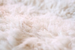 White fur as abstract background. Photo of white furry wool as abstract texture background with the small depth of field Royalty Free Stock Image