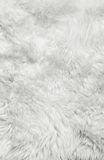 White fur background Royalty Free Stock Photos