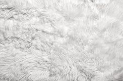 Free White Fur Background Stock Photos - 26455233