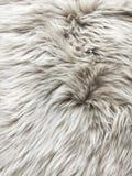 White fur background Stock Photo
