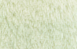 White fur background and texture Royalty Free Stock Images