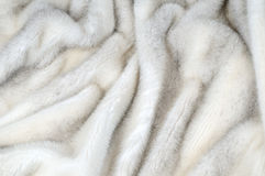 White fur mink background Stock Photos