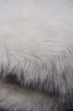 White furry fabric Royalty Free Stock Photos