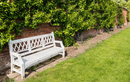 White Bench in an English Walled Garden. Against a brick wall with overhanging foliage with a lawn in front. Shropshire, England, UK stock images