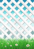 White garden fence with grass and flowers, spring background Royalty Free Stock Image