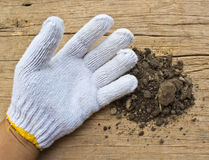 White garden  gloves a with soil Stock Photography
