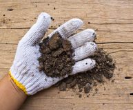 White garden  gloves a with soil Stock Images