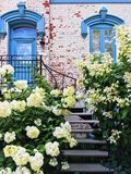 White gardenias decorating facade of a picturesque townhouse Royalty Free Stock Image
