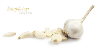 White garlic Royalty Free Stock Photo