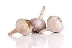 White garlic Stock Photo