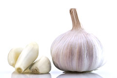 Free White Garlic Bulb Stock Photography - 13517882