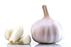 White Garlic Bulb Stock Photography