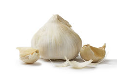 White garlic with garlic cloves Stock Images