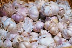 White garlic pile texture. Fresh garlic on market table closeup photo royalty free stock photos
