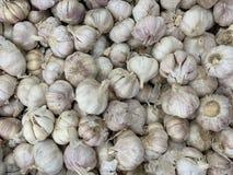 White garlic pile texture. Fresh garlic on market table closeup photo stock photo