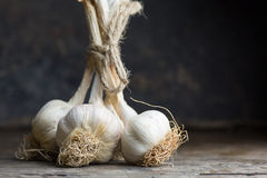 White garlic on table Royalty Free Stock Images