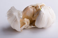 White garlic on white background. Closeup Royalty Free Stock Photography