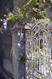 White gate with flowers Royalty Free Stock Photos