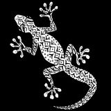White gecko on a black background Royalty Free Stock Image