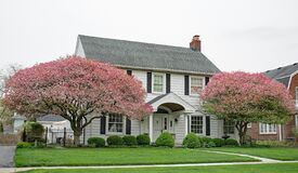 Free White Georgian Colonial House With Two Large Flowering Crab Apple Trees Stock Photos - 216642163