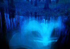 White ghost near water. Birch trees and ghost reflected in the water and glowing stars, surreal fantasy background vector illustration