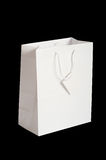 White Gift Bag Stock Photo