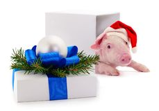White gift box with blue ribbon and toy. Isolated on white color background royalty free stock photo