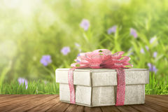White gift box for Mother`s Day Stock Photography