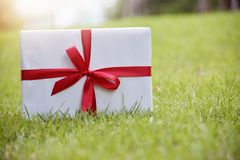 White gift box with red ribbon on green grass background. Stock Photos