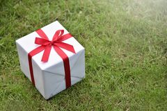 White gift box with red ribbon on green grass background. Stock Image