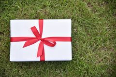 White gift box with red ribbon on green grass background. Royalty Free Stock Images