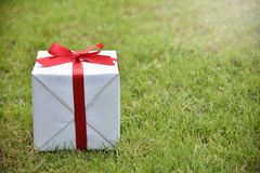 White gift box with red ribbon on green grass background. Stock Images