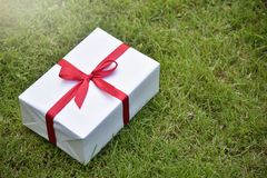 White gift box with red ribbon on green grass background. Royalty Free Stock Photos