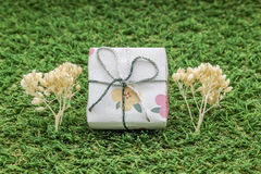 white gift box with silver ribbon on green grass background decorated with dry plant tree Royalty Free Stock Images