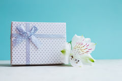 White gift box with single alstroemeria flower on mint backgroun Stock Photography