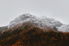 White Glacier Mountain Royalty Free Stock Image
