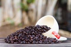 White glass coffee beans Royalty Free Stock Photos
