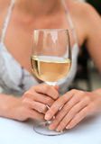 White glass of wine. Stock Images