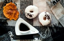 White glazed donuts in vintage cup of hot chocolate on plaid in Scandinavian style. Healthy drink and sweet food,copy space stock photography