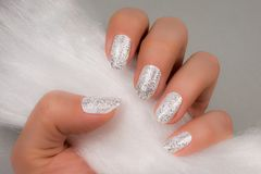 White glittered nails on gray background. Female hand with white glittered nails is holding white fur on gray background Royalty Free Stock Photography