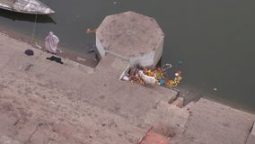 White goat eating ceremony flowers on Ganges coast, Varanasi. White goat eating ceremony flowers on Ganges river coast,Varanasi,India stock footage