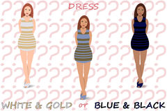 White and Gold or Blue and Black Dress Royalty Free Stock Photography