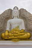 White and gold Buddha. White Buddha is covered in gold by half Stock Image