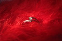 White gold diamond ring on red feathers. Romantic background. Closeup view royalty free stock photos