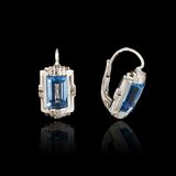 White gold earrings Stock Image