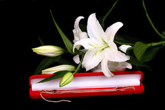 White gold and Lilies Stock Images
