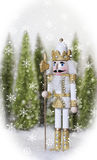 White Gold Nutcracker Stock Images